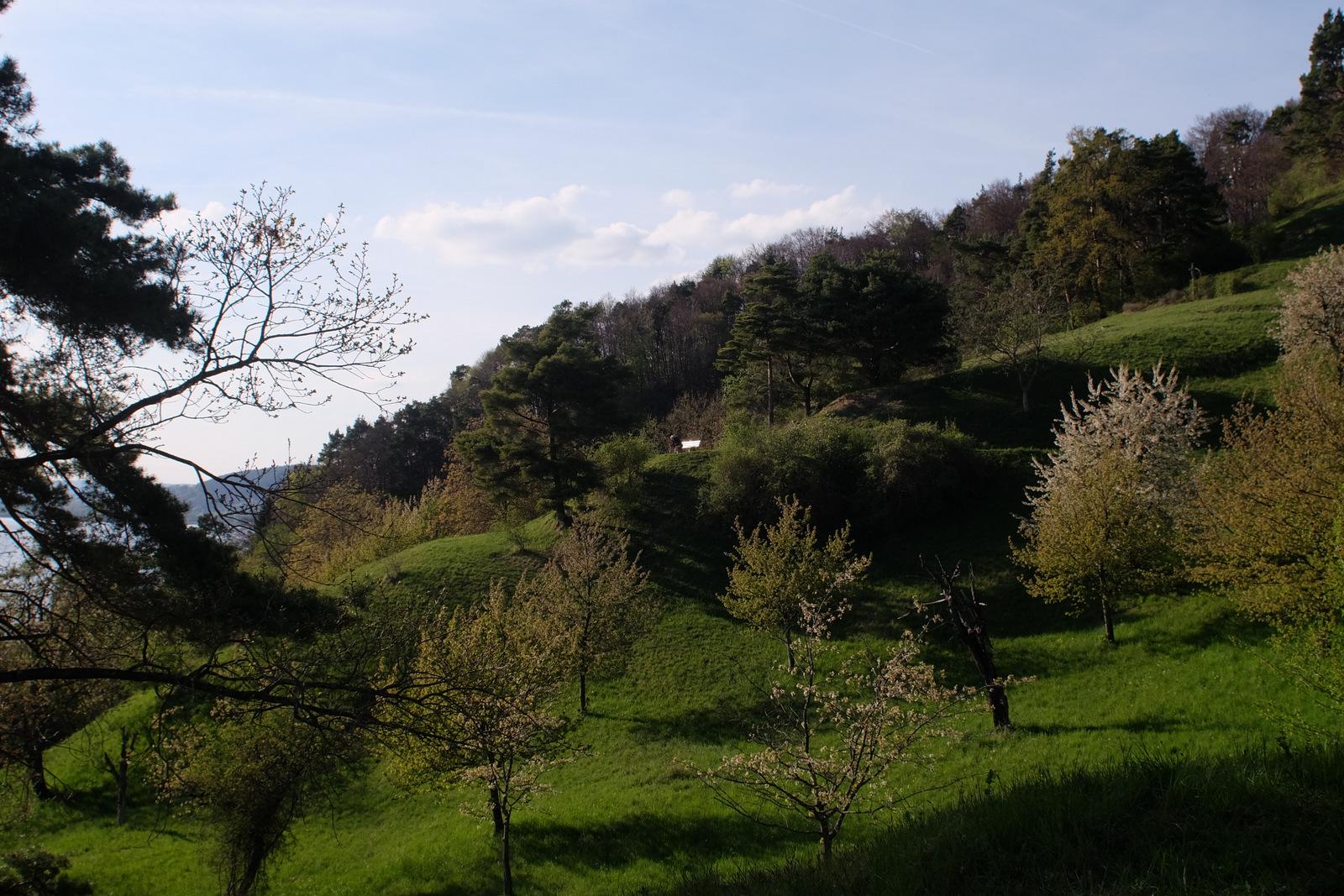 Ferienwohnung Schwarzwald Menzenschwand Umgebung Bodensee
