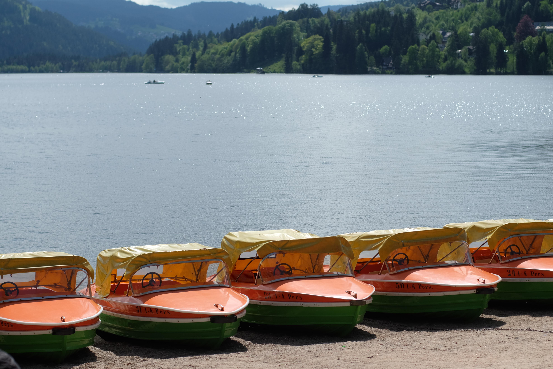 Ferienwohnung Schwarzwald Menzenschwand Umgebung Titisee