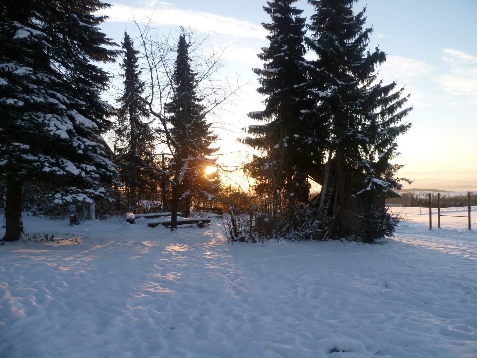 Winterwandern im schwarzwald ferienwohnung in menzenschwand for Ferienwohnung im schwarzwald
