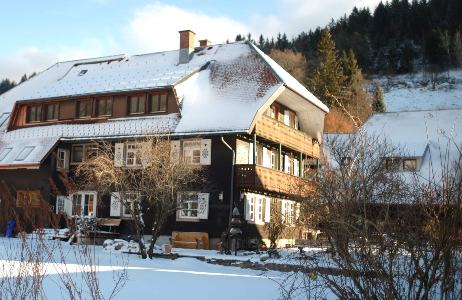 Skiurlaub im Schwarzwald Rehbachhaus Frontseite Winter